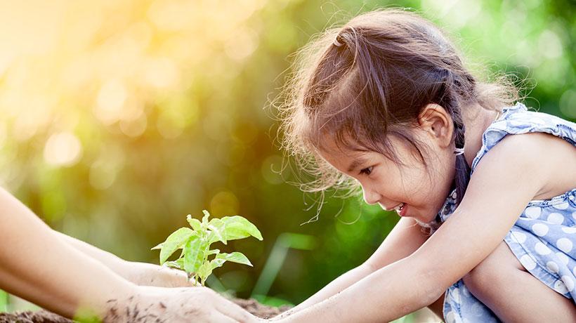 Contribuer aux enjeux du développement durable