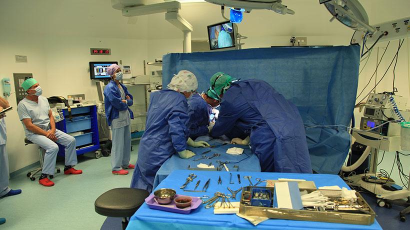 1ere fois en France : une patiente va être greffée d'un bras bionique